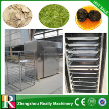 Industrial dried blueberries machine /beef jerky dehydrator and dryer