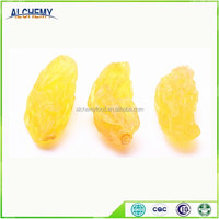 gold raisin from xinjiang China in high quality
