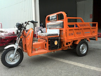 800W 1000W 1500W 2000WCargo Use and Electric Driving Type electric tricycle Three Wheeler