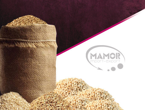 Wholesaler Sesame of Burkina Faso