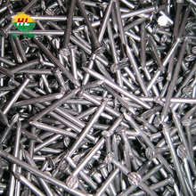 high quality & competitive price common wire nails