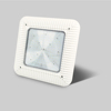 Rise lite LED canopy gas station light 100W