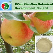 Green Apple Extract,Apple Extract Powder,Apple Polyphenols Extract