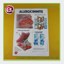 Promotional gifts custom 3d medical posters/charts