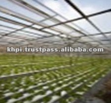 Sun Protection Film for Agriculture