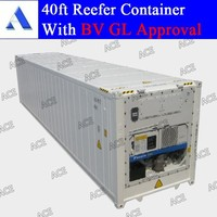 New 40 ft refrigerated container for sale