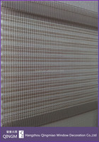Pleated Simple Pattern Zebra Blind Fabric Blackout
