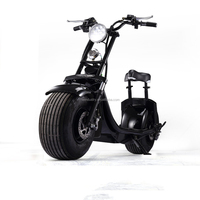 city scooter 1000W long range Electric Scooter, Electric motorcycle