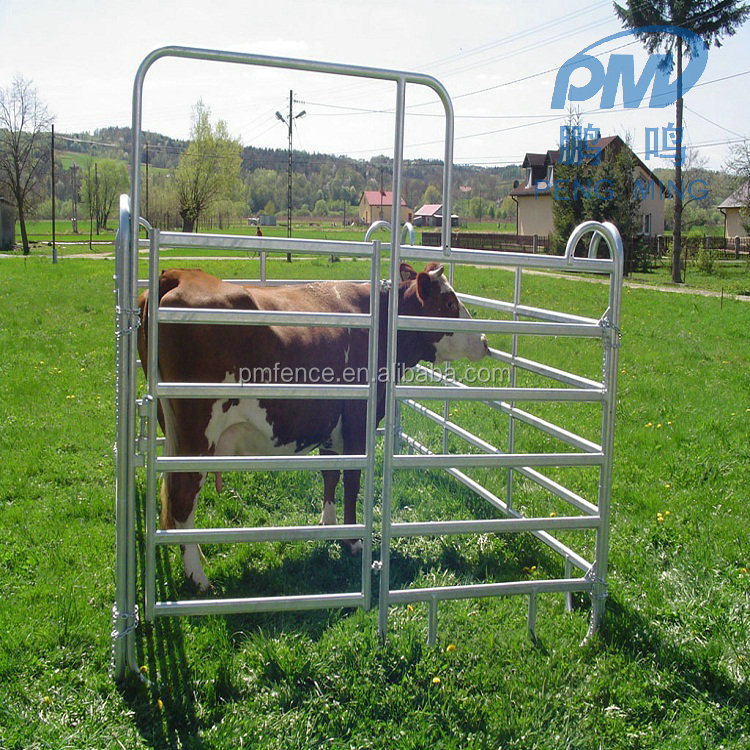 Ausralia market standard hot cheap Horse corral panels and gates