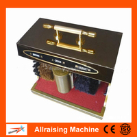 Automatic Induction Portable Electric Shoe Polisher