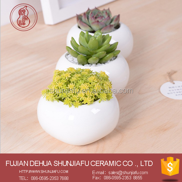 Indoor Decor Ceramic White Small Flower Pot, Succulent Plants Pots