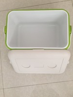vaccine cold storage cooler ice box tropical ice boxes for fruits lunch bag plastic