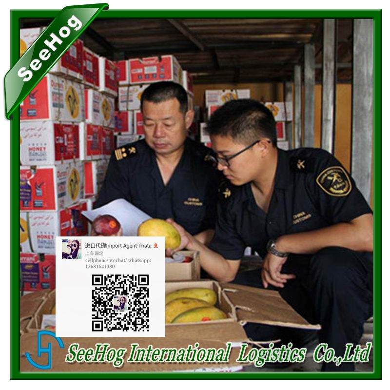 freight forwarding agent china import ingredient free tax