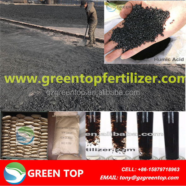 Green Top Potassium Humate Granules Humic Acid
