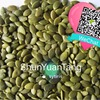 China Pumpkin Seeds Kernel Shine Skin