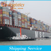 cheap sea container freght cost from china to Guadalajara--Elva skype:colsales35
