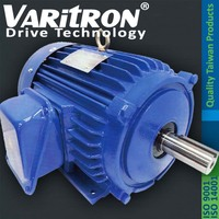 Varitron V11 Ac induction electric IEC 3 Phase Motor