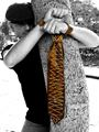 Ties And Neckties For Women And Fashion