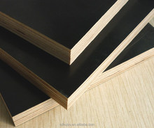 12mm Black/Brown High quality Film Faced Plywood From China