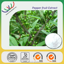 Free sample High quality 10% piperine Organic black pepper extract powder