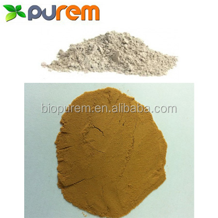 Snail extract powder for medical and food use