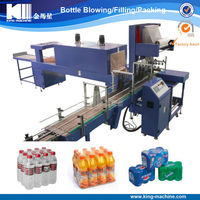 Plastic Film Group Packing Machine / Shrink Wrapper