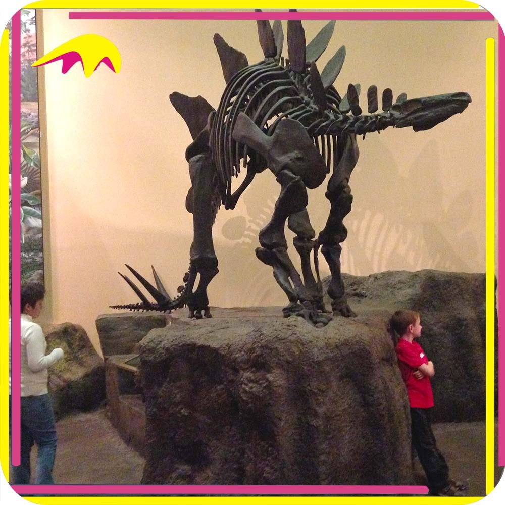 KANO2250 Museum Artificial Replica Fake Bone Dinosaur Fossil