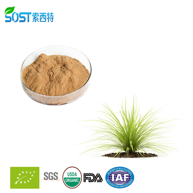 Hot Sale Yucconin Yucca Extract Powder