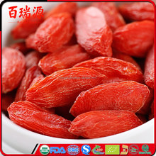 Goji leaves nutritional value goji berries & leaves border goji leaves tea