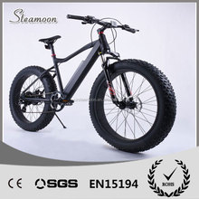 hot selling 4inch fat tire lithium mountain ebike electric bike with CE