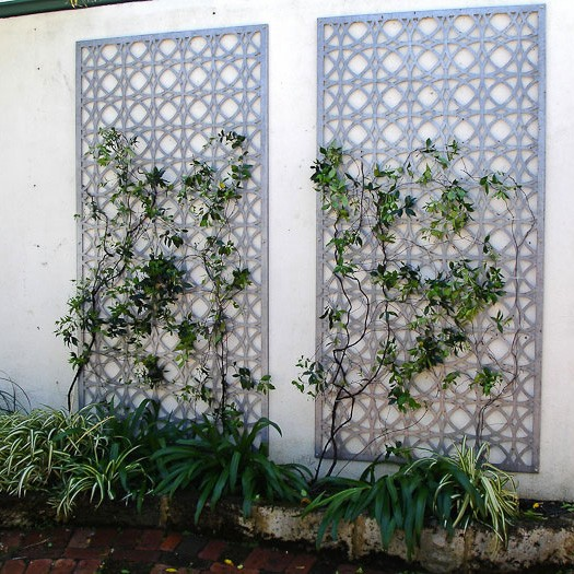Decorative perforated metal screen privacy screen