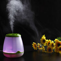 LED Colorful light Mini humidifier/ usb ultrasonic mist humidifier /WY-4031G