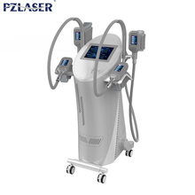 wholesale coolsculption / Cryolipoly Cool Shape Fat Suction beauty equipment machine for Fat loss Criolipolisis pz806