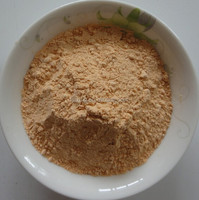Freeze-dried asparagus powder