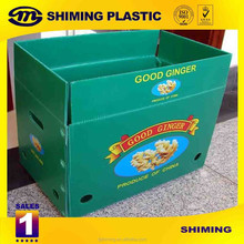 Reusable PP Corrugated Plastic Folding Waterproof Box