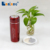 alkaline energy drink water bottle stainless steel mug