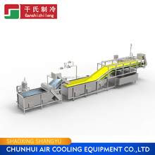 French fries Processing Machine Vegetable and Fruit Production Line