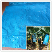 Blue PE protective film for banana bunch cover 90*160