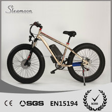 High performance electric bicycle/bike with double battery