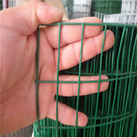 Anping hot sale 1 / 2 inch square hole PVC Coated Welded Wire Mesh