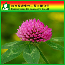 Red Clover Extract Formononetin 98% powder with competitive price