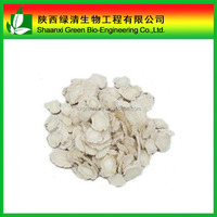 Chinese Angelica Extract Powder