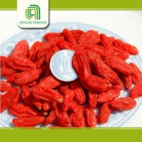 farm dried organic goji berry in bulk prior gojiberry for sale