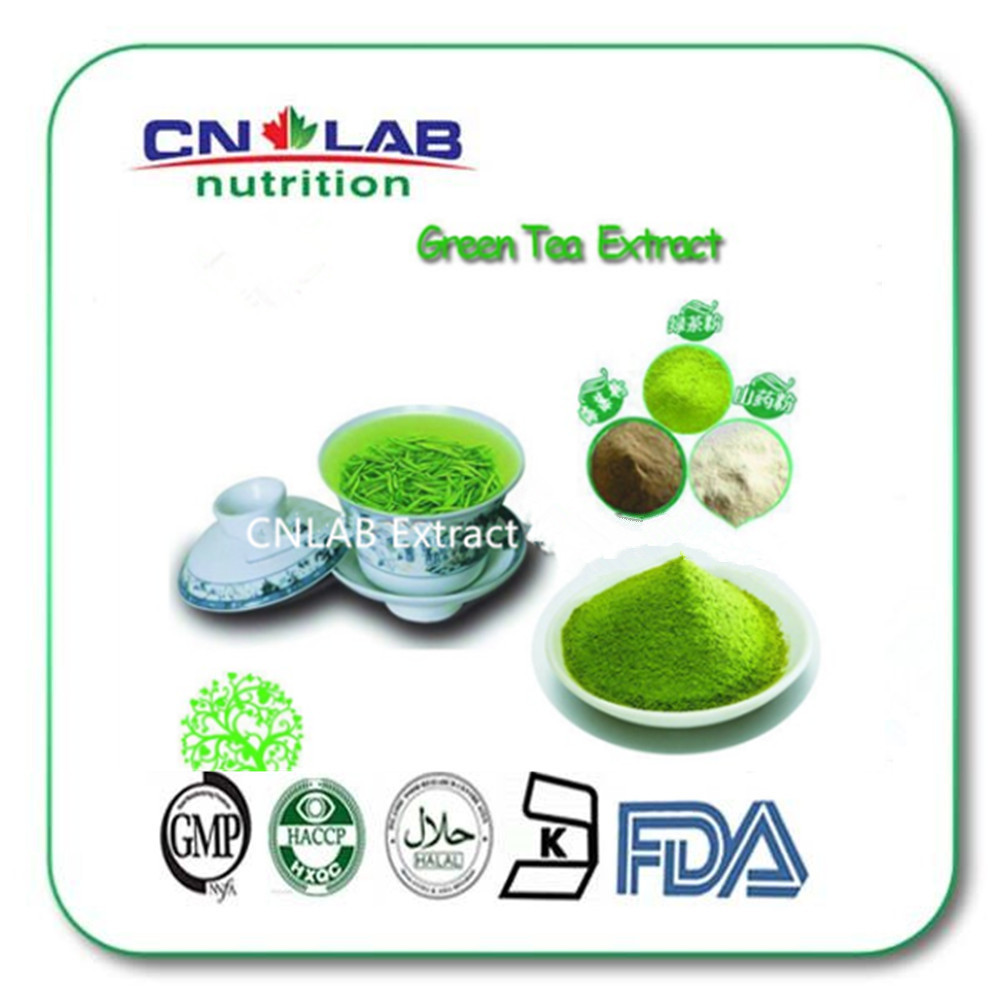 100% Natural Now Green Tea Extract with Powder