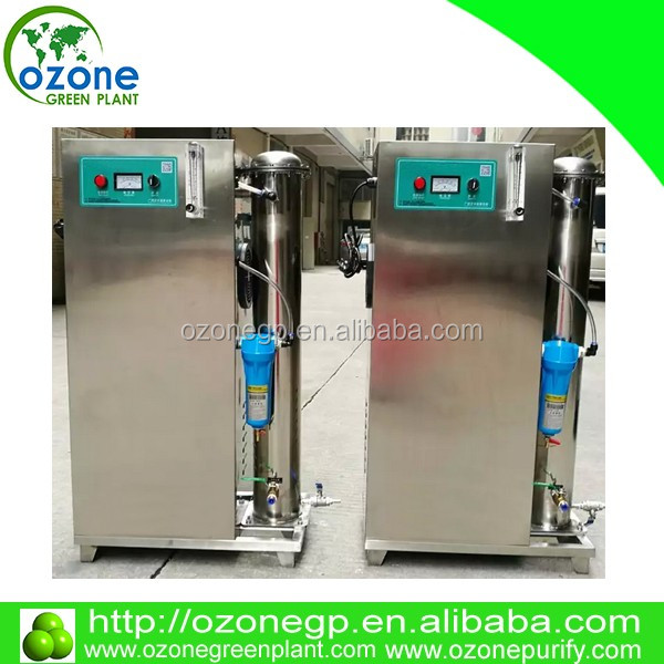 20G ~ 30g 100g 5g 10g Water treatment large industrial ozone generator