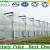 Plastic Industry Agricultural Greenhouse Film