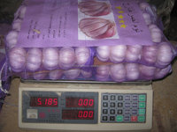Lowest Price of Chinese Garlic