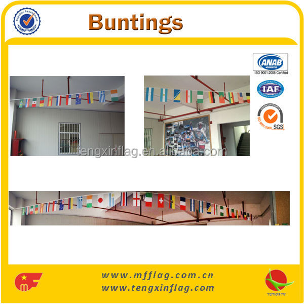Most Popular Triangle Paper Bunt Flag