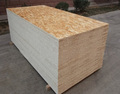 OSB boards 6-45mm waterproof mterial osb boards