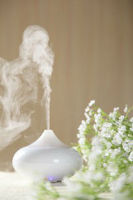Scent aroma diffuser used with plant extraction or garcinia cambogia extract, herbal extract